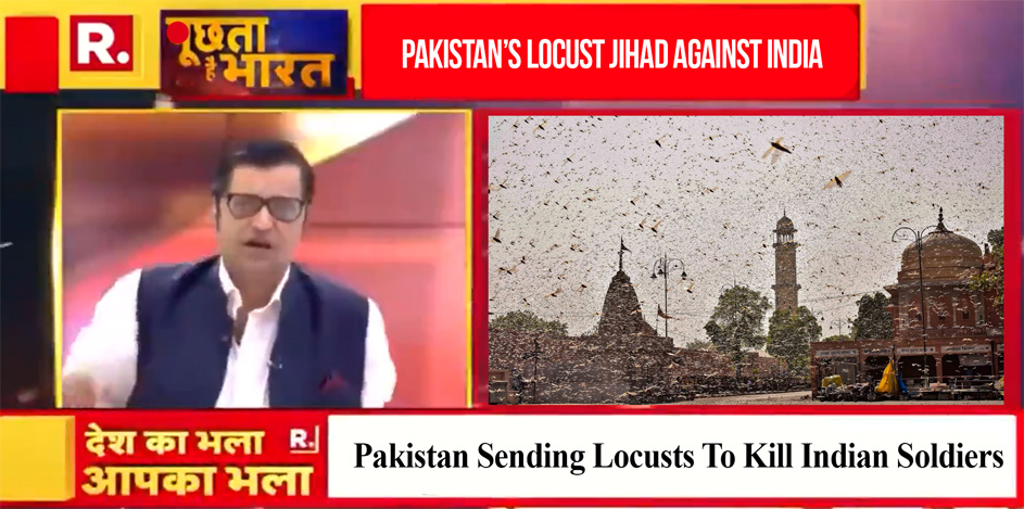 Pakistan Sent Locusts To Kill Indian Soldiers: Indian Media