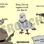 Indian Army Arrested A pigeon